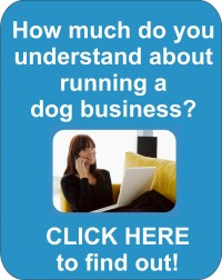 running a dog training business